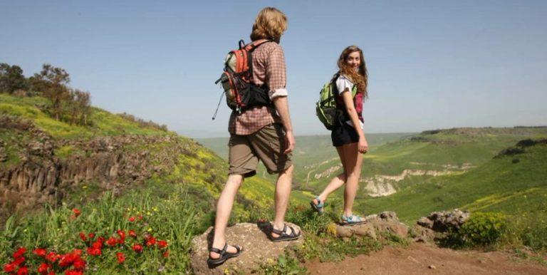 Quelles sont les meilleures chaussures de randonnée et trekking ?